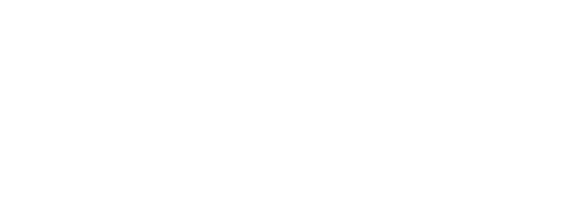 investment management SFG White Logo
